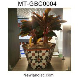 Chau-bong-MT-GBC0004